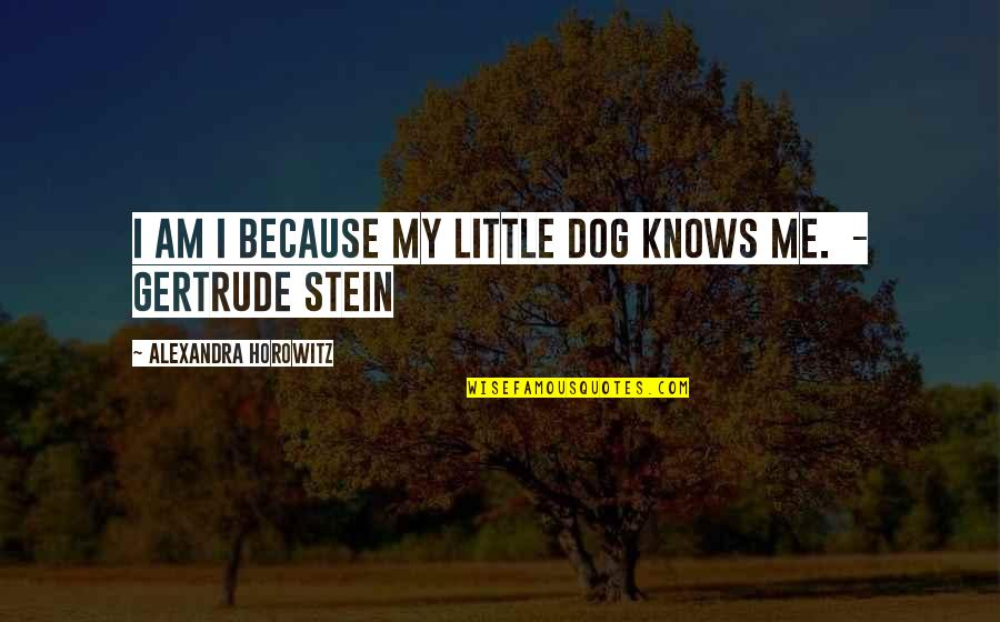 Just Me And My Dog Quotes By Alexandra Horowitz: I am I because my little dog knows