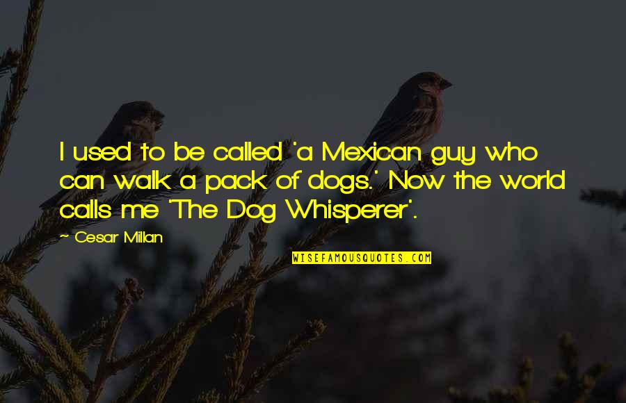 Just Me And My Dog Quotes By Cesar Millan: I used to be called 'a Mexican guy