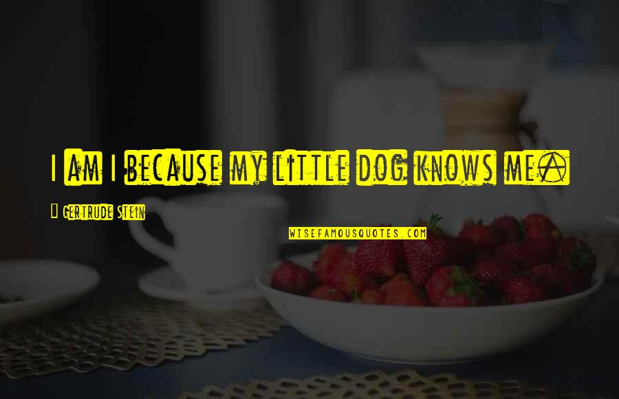 Just Me And My Dog Quotes By Gertrude Stein: I am I because my little dog knows