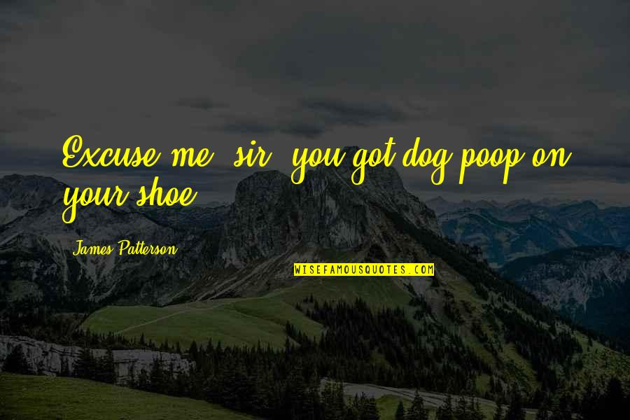 Just Me And My Dog Quotes By James Patterson: Excuse me, sir, you got dog poop on