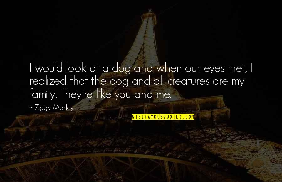 Just Me And My Dog Quotes By Ziggy Marley: I would look at a dog and when