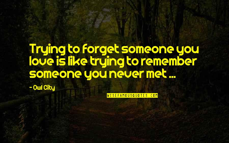 Just Met You And I Like You Quotes By Owl City: Trying to forget someone you love is like