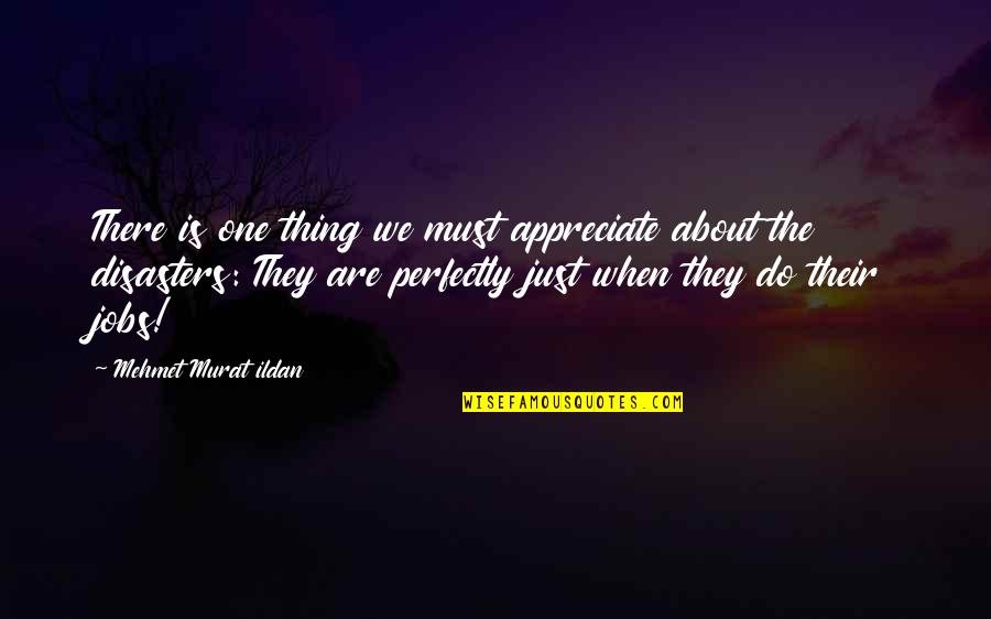 Just One Thing Quotes By Mehmet Murat Ildan: There is one thing we must appreciate about