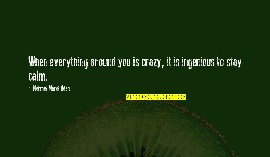 Just Stay Calm Quotes By Mehmet Murat Ildan: When everything around you is crazy, it is