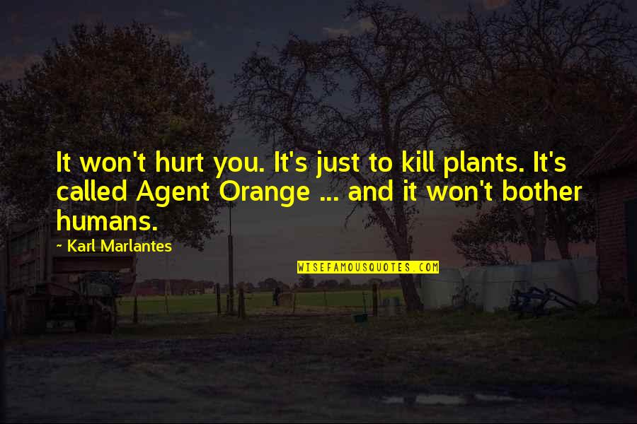 Just War Quotes By Karl Marlantes: It won't hurt you. It's just to kill
