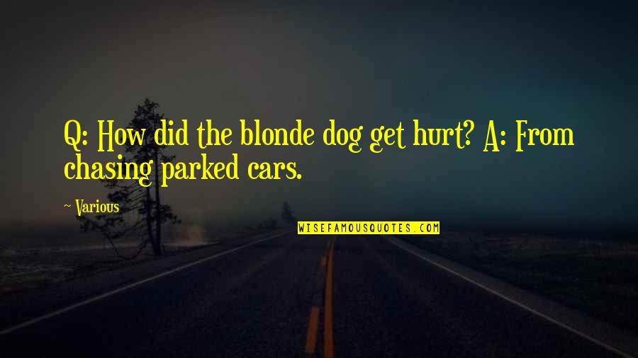 Kabir Das Famous Quotes By Various: Q: How did the blonde dog get hurt?