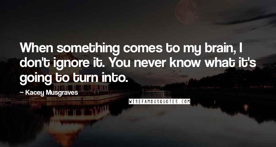 Kacey Musgraves quotes: When something comes to my brain, I don't ignore it. You never know what it's going to turn into.