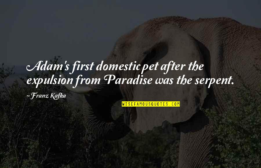 Kafka's Quotes By Franz Kafka: Adam's first domestic pet after the expulsion from