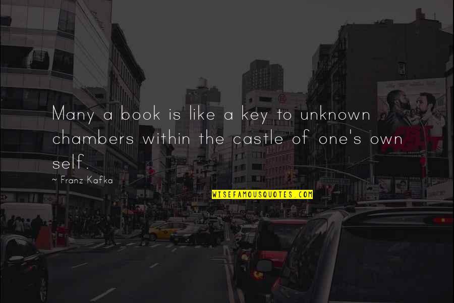 Kafka's Quotes By Franz Kafka: Many a book is like a key to