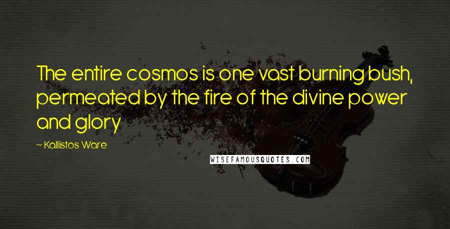 Kallistos Ware quotes: The entire cosmos is one vast burning bush, permeated by the fire of the divine power and glory