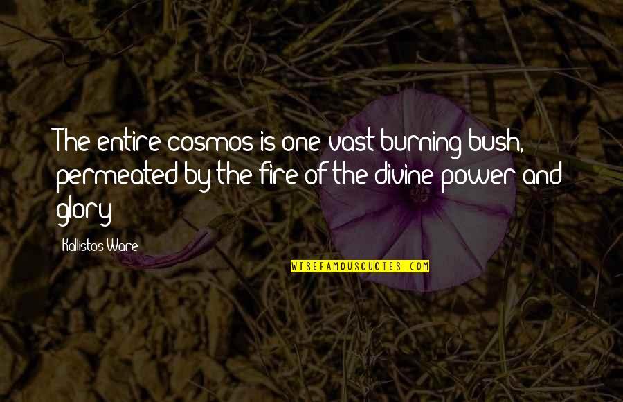 Kallistos Ware Quotes By Kallistos Ware: The entire cosmos is one vast burning bush,