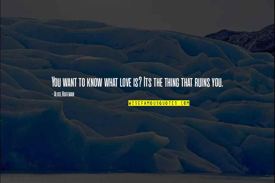 Kamite Quotes By Alice Hoffman: You want to know what love is? Its