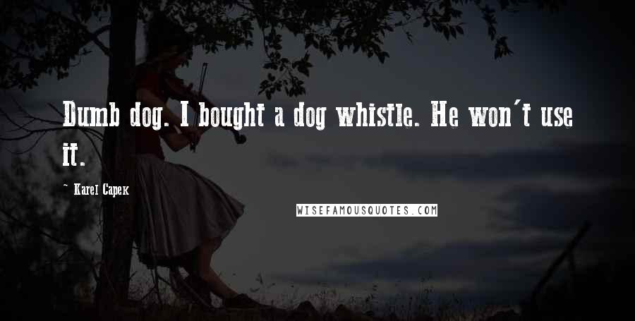 Karel Capek quotes: Dumb dog. I bought a dog whistle. He won't use it.