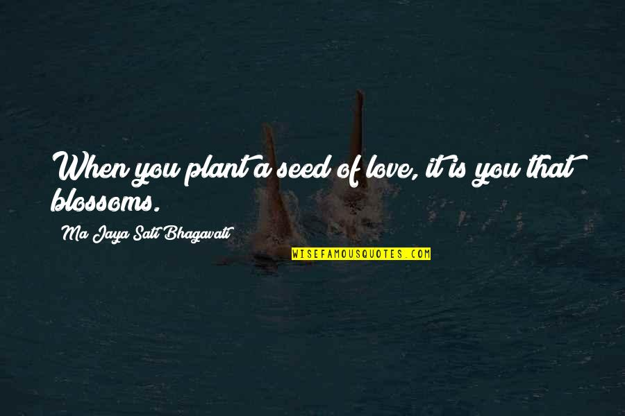 Karmic Quotes By Ma Jaya Sati Bhagavati: When you plant a seed of love, it