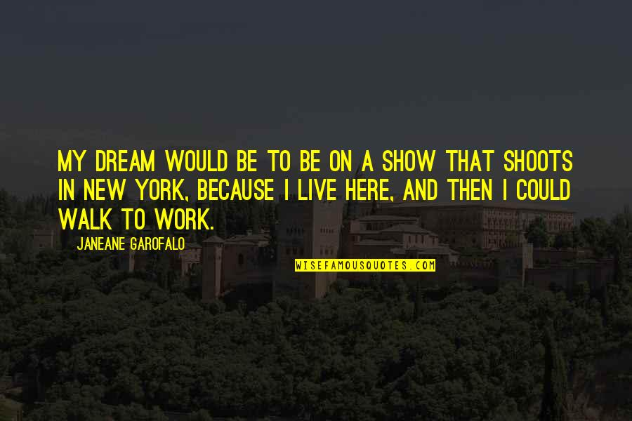 Katerina Ivanovna Quotes By Janeane Garofalo: My dream would be to be on a