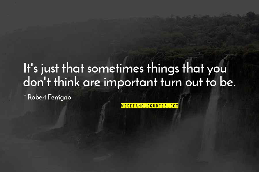 Katerina Ivanovna Quotes By Robert Ferrigno: It's just that sometimes things that you don't