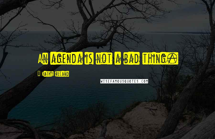 Kathy Ireland quotes: An agenda is not a bad thing.