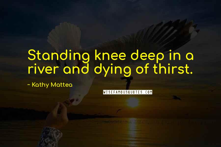 Kathy Mattea quotes: Standing knee deep in a river and dying of thirst.