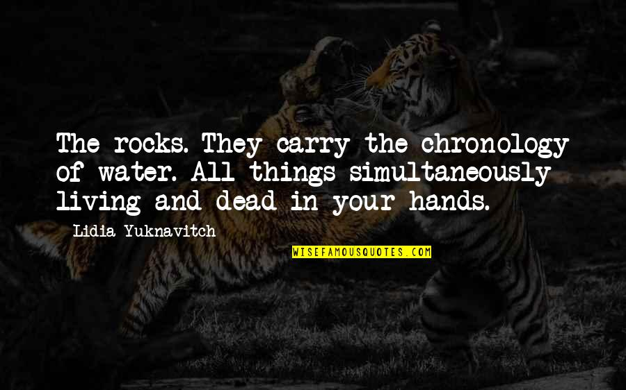 Kathy Sylva Quotes By Lidia Yuknavitch: The rocks. They carry the chronology of water.