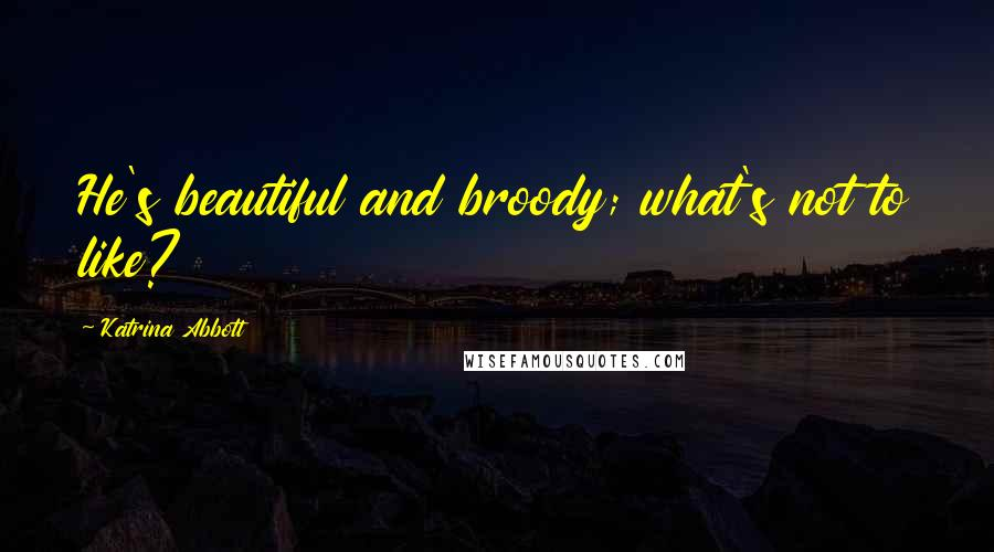 Katrina Abbott quotes: He's beautiful and broody; what's not to like?