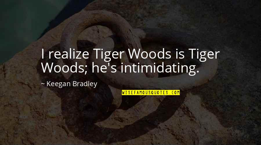 Keegan Quotes By Keegan Bradley: I realize Tiger Woods is Tiger Woods; he's
