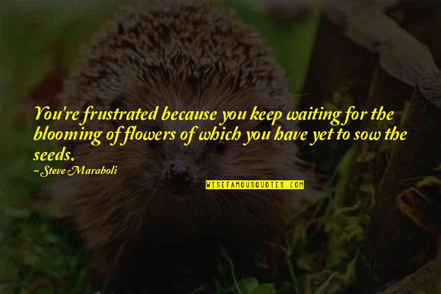 Keep Blooming Quotes By Steve Maraboli: You're frustrated because you keep waiting for the