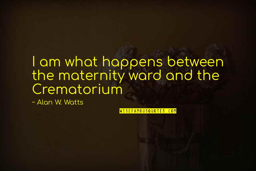Keeping It 100 Quotes By Alan W. Watts: I am what happens between the maternity ward