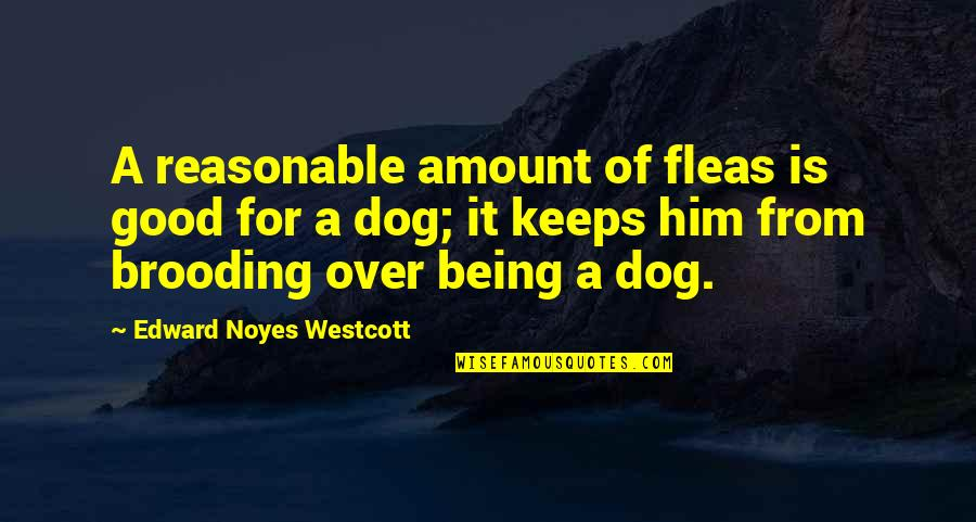 Keeps Quotes By Edward Noyes Westcott: A reasonable amount of fleas is good for