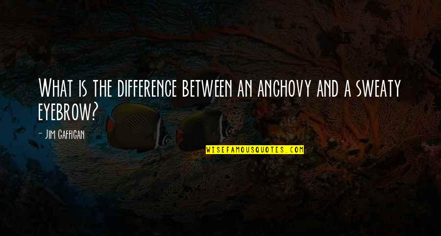 Key And Lock Tattoo Quotes By Jim Gaffigan: What is the difference between an anchovy and