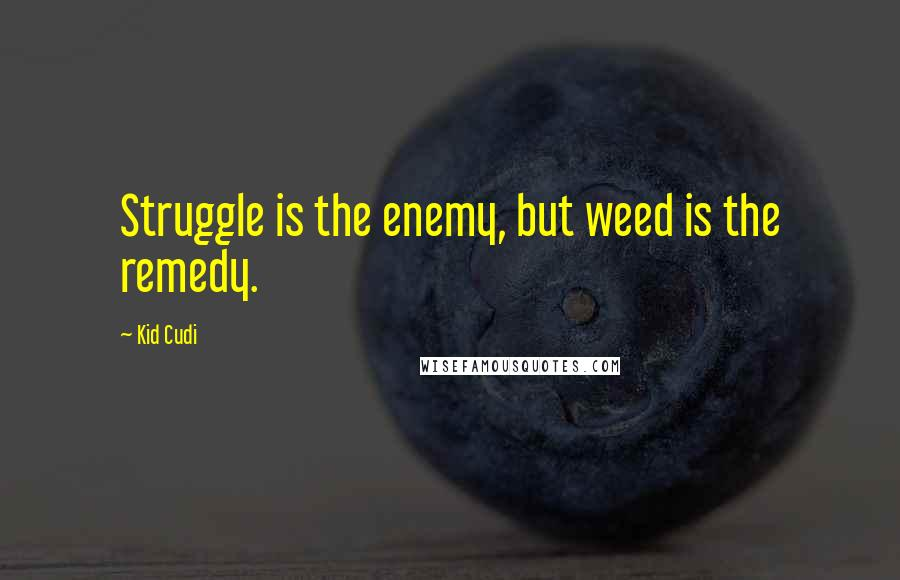 Kid Cudi quotes: Struggle is the enemy, but weed is the remedy.