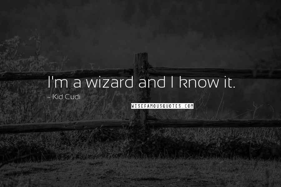 Kid Cudi quotes: I'm a wizard and I know it.