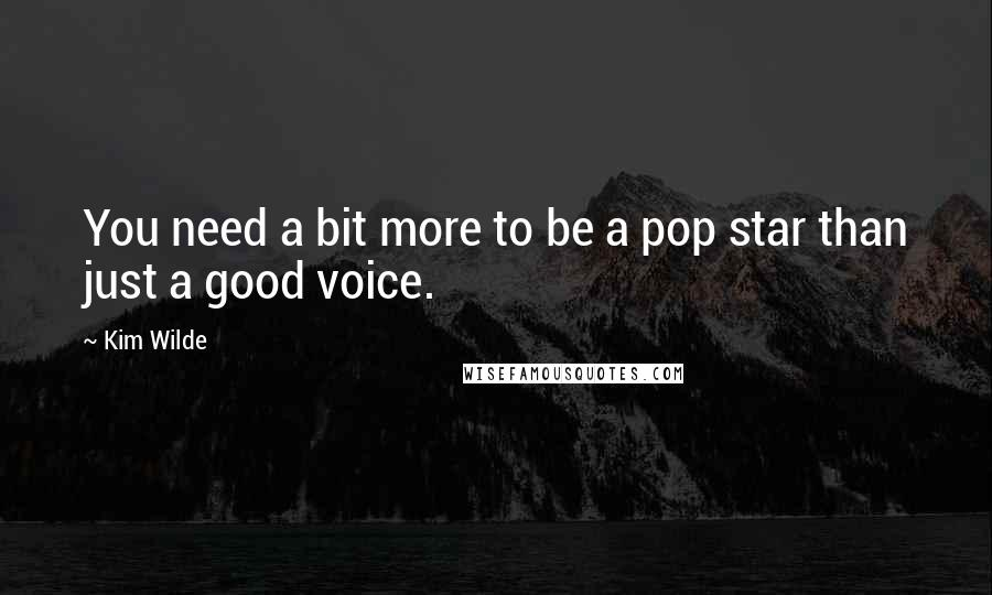 Kim Wilde quotes: You need a bit more to be a pop star than just a good voice.