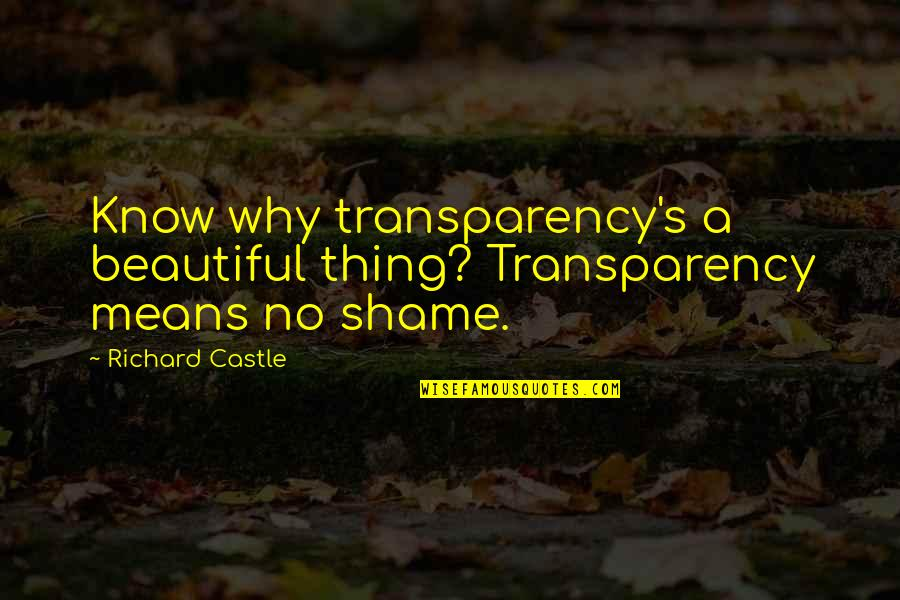 Kinte's Quotes By Richard Castle: Know why transparency's a beautiful thing? Transparency means