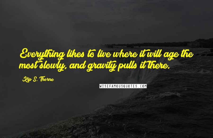 Kip S. Thorne quotes: Everything likes to live where it will age the most slowly, and gravity pulls it there.