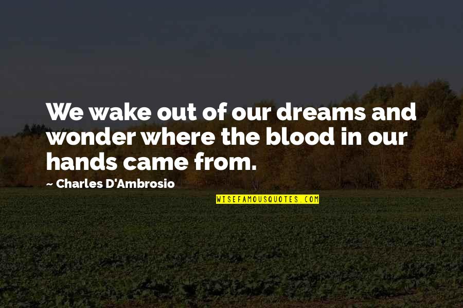 Kipple Quotes By Charles D'Ambrosio: We wake out of our dreams and wonder