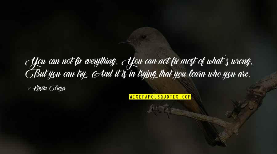 Kirsten's Quotes By Kirsten Beyer: You can not fix everything. You can not