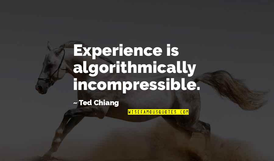 Kite Runner Betrayal Redemption Quotes By Ted Chiang: Experience is algorithmically incompressible.