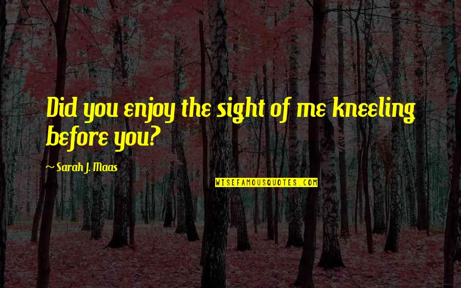 Kneeling Quotes By Sarah J. Maas: Did you enjoy the sight of me kneeling
