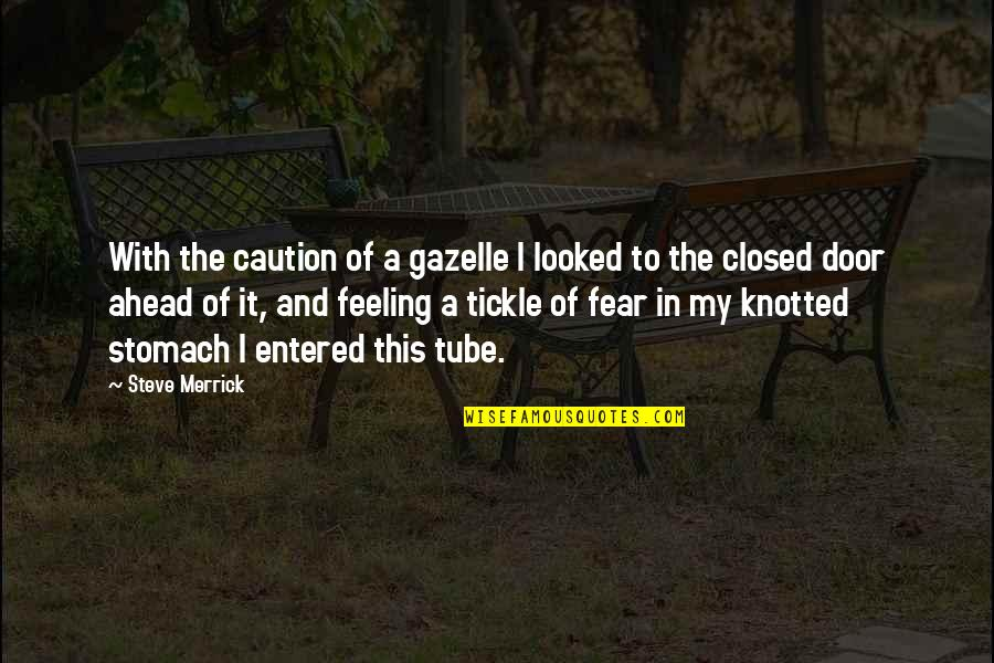 Knotted Quotes By Steve Merrick: With the caution of a gazelle I looked