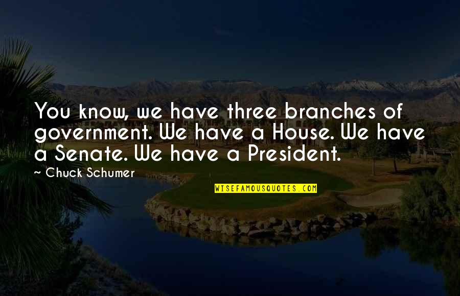 Know You Quotes By Chuck Schumer: You know, we have three branches of government.