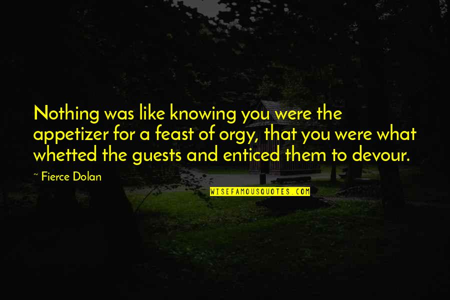 Knowing Each Other Quotes By Fierce Dolan: Nothing was like knowing you were the appetizer