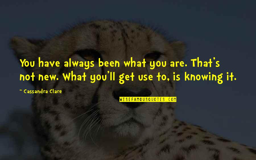 Knowing What You Have Quotes By Cassandra Clare: You have always been what you are. That's