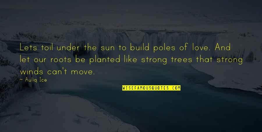 Knowing When To Speak Quotes By Auliq Ice: Lets toil under the sun to build poles