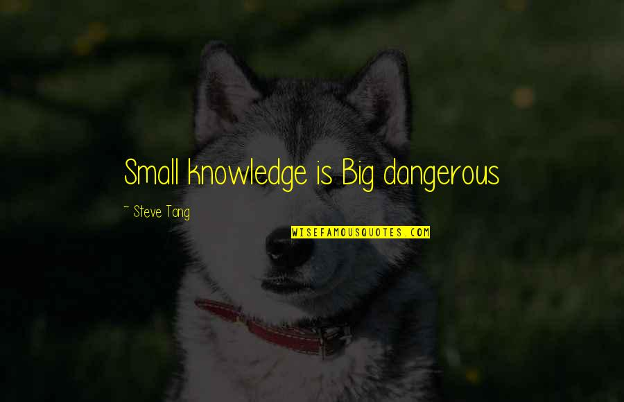 Knowledge Is Dangerous Quotes By Steve Tong: Small knowledge is Big dangerous