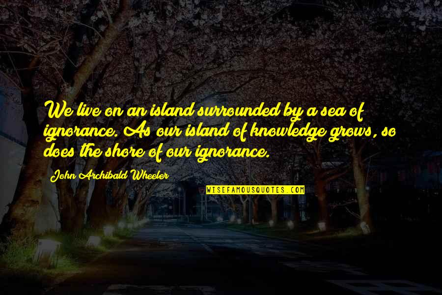 Knowledge Of Quotes By John Archibald Wheeler: We live on an island surrounded by a
