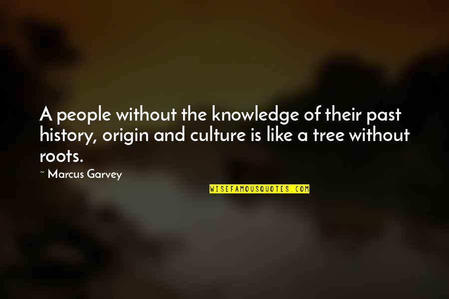 Knowledge Of The Past Quotes By Marcus Garvey: A people without the knowledge of their past