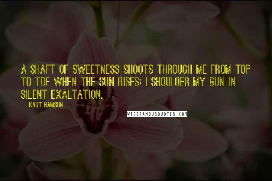 Knut Hamsun quotes: A shaft of sweetness shoots through me from top to toe when the sun rises; I shoulder my gun in silent exaltation.
