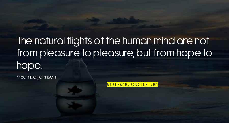 Kobus Van Rensburg Quotes By Samuel Johnson: The natural flights of the human mind are