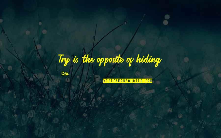 Koo Quotes By Seth: Try is the opposite of hiding.