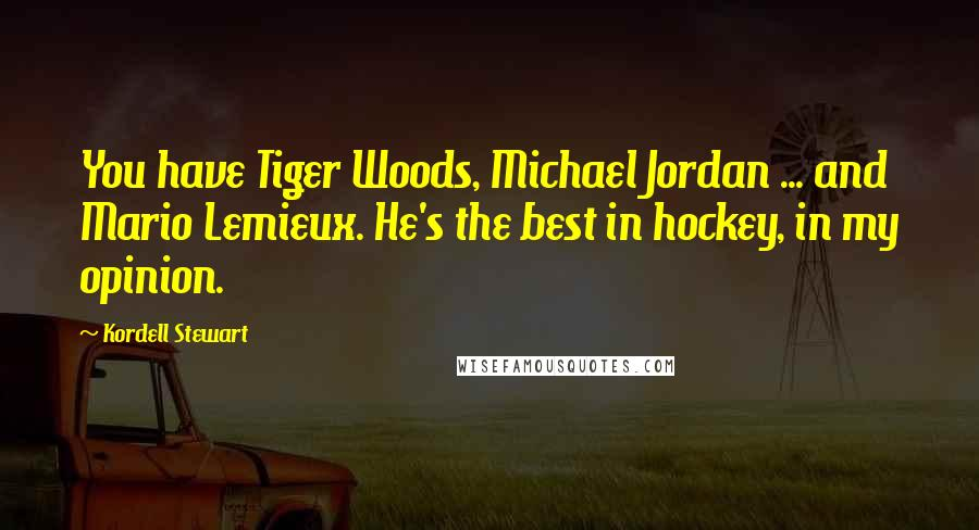 Kordell Stewart quotes: You have Tiger Woods, Michael Jordan ... and Mario Lemieux. He's the best in hockey, in my opinion.